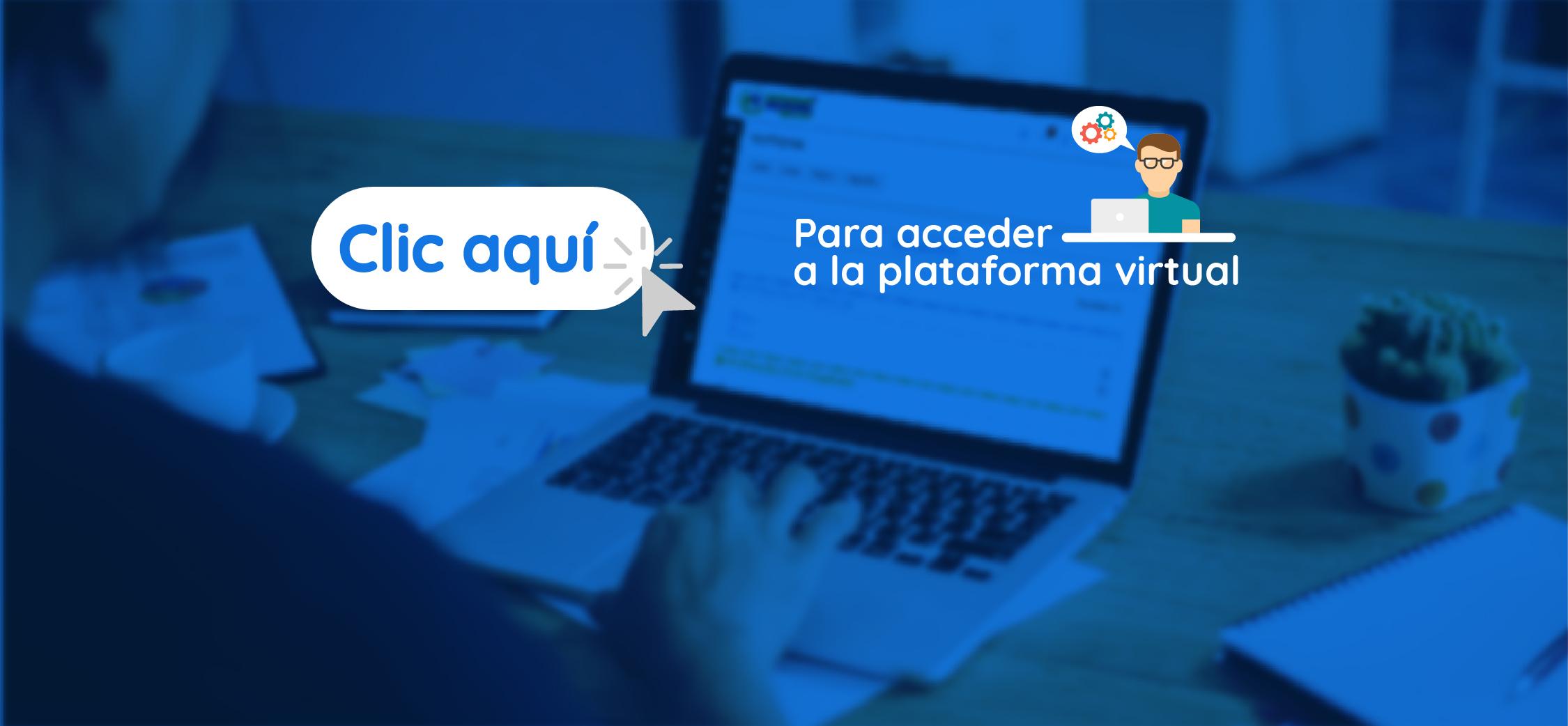 accede_a_la_plataforma_virtual-01